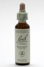 Walnut 20 ml (Bach Flower Remedies)