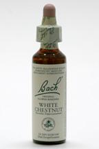 White Chestnut 20 Ml Bach Flower Remedies Gaudaur Natural Foods