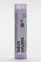 Ledum Palustre, 30c (boiron)