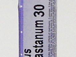 aesculus hippocastanum 30 ch sublingual pellets (boiron)