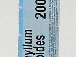 caulophyllum thalictroides 200ch sublingual pellets (boiron)