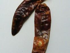 chili (whole)