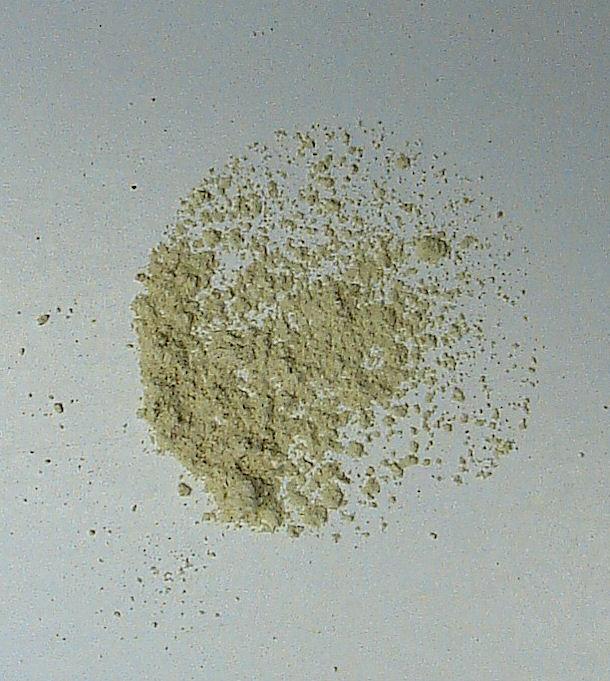 garlic, organic (powder)