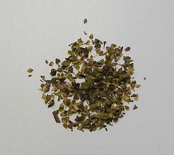 organic oregano leaf, cut and sifted
