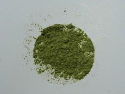 alfalfa leaf (pwd)