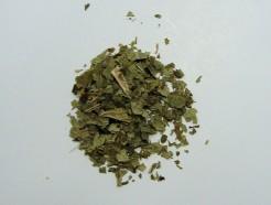 black currant leaf (c/s)