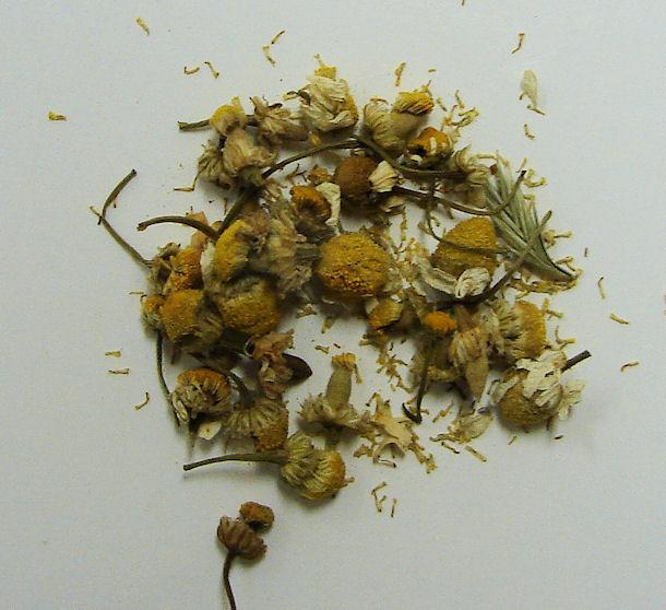 chamomile flower, organic