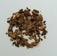 cramp bark, wildcrafted (c/s)