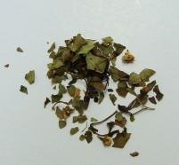 hawthorn leaf/flower (c/s)