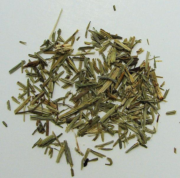 horsetail grass, organic, (c/s)