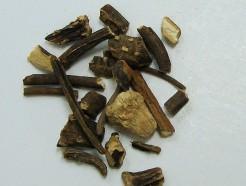 mandrake root (c/s)