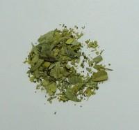 senna leaf (c/s)