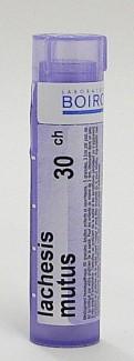 lachesis mutus 30ch sublingual pellets (boiron)