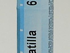 Pulsatilla, 6 ch (Boiron)