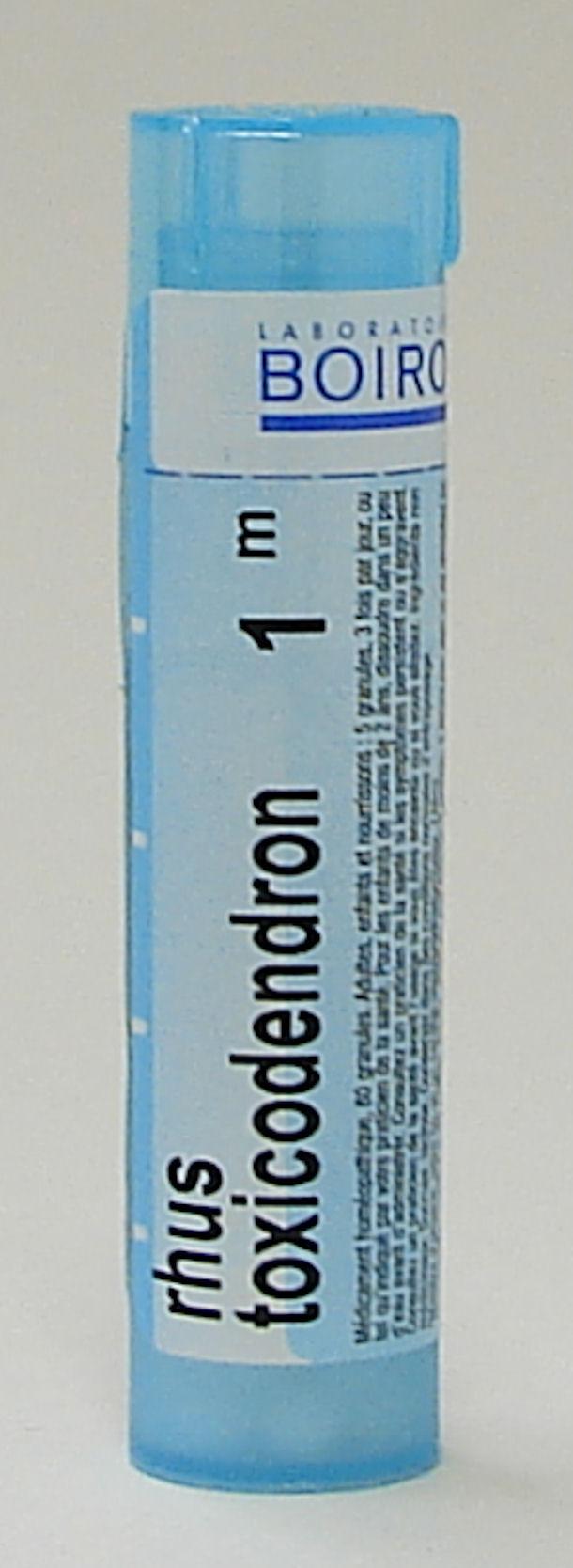 Rhus Toxicodendron, 1M (Boiron)