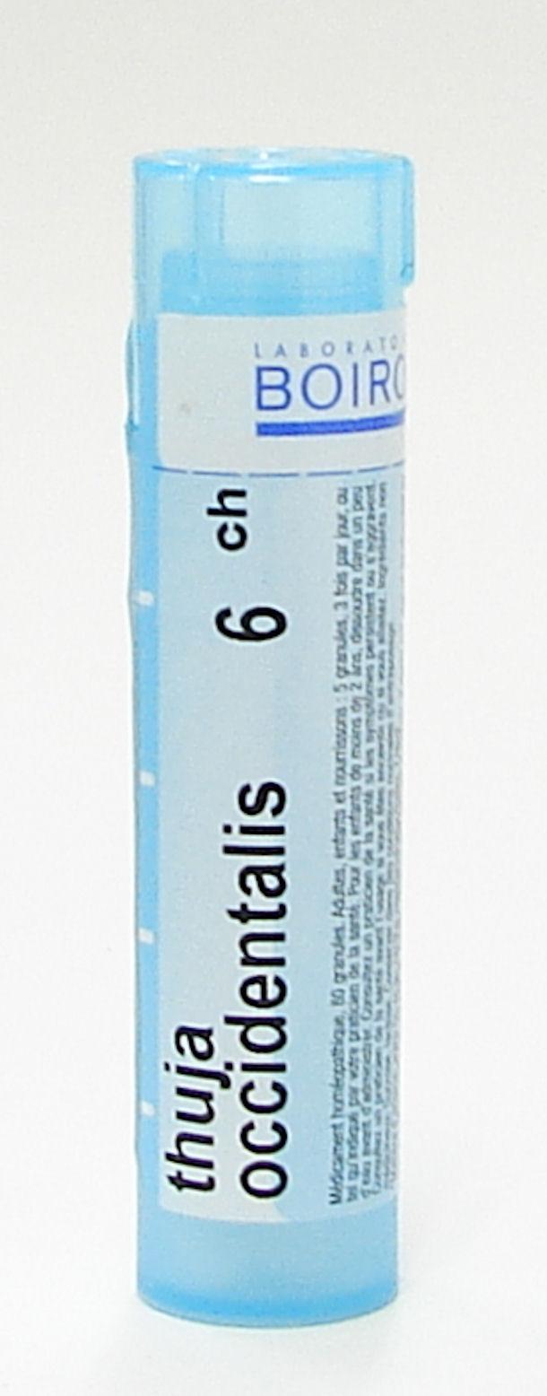 Thuja Occidentalis, 6ch sublingual pellets (Boiron)