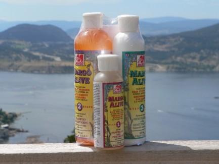Margo Alive Hair 3-Step Hair Restoring System